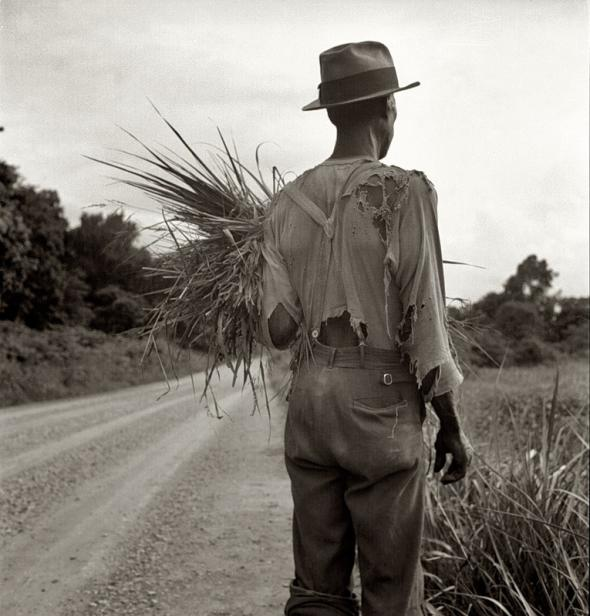 the farmers plight during the great depression
